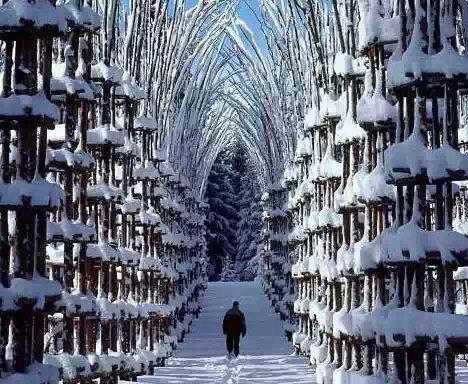 النرويج الثلج