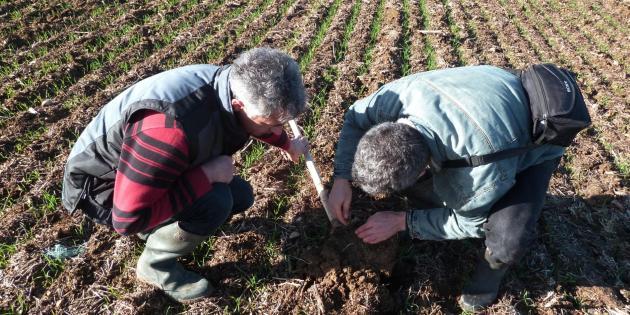 L'agriculteur Vincent Baron (G) et l'ingénieur agronome Stéphane Aissaoui examinent la terre d'une parcelle le 4 décembre 2012 près de Thouars[Anne Chaon / AFP]