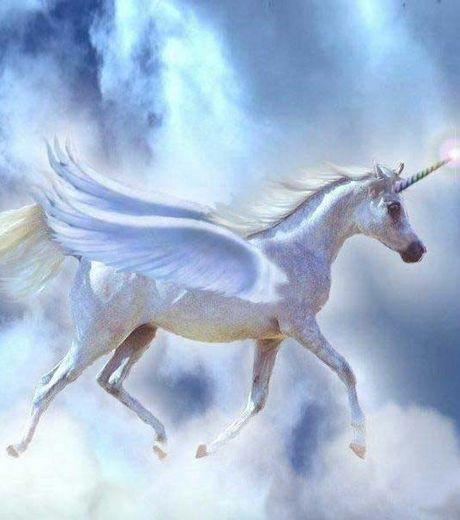 D couvrez la licorne la l gendaire cr ature corne - Image de licorne ...