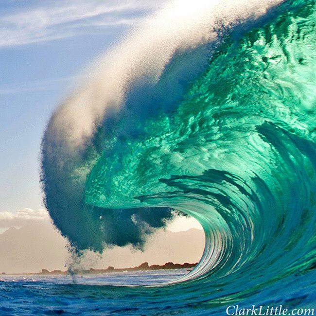 photo de surf 11460