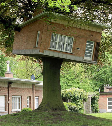 D couvrez les 17 plus belles cabanes dans les arbres du - Construire une maison dans un arbre ...