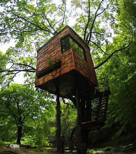 d couvrez les 17 plus belles cabanes dans les arbres du monde galerie etrange et insolite. Black Bedroom Furniture Sets. Home Design Ideas