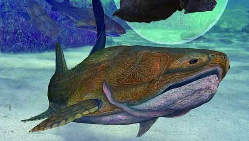 Représentation artistique du Entelognathus primordialis  Photo :  Brian Choo © afp.