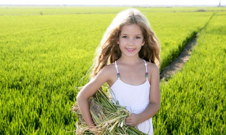 624 r sidus de dangereux pesticides relev s dans les - Vers dans les cerises dangereux ...