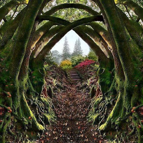 L image du jour entr e du jardin secret de portland en for Jardin secret des hansen