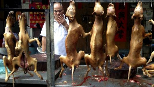 Un stand de viande de chien à l'ouverture du plus célèbre festival de viande de chien de Chine. Yulin, le 21 juin 2016. REUTERS/Kim Kyung-Hoon/File photo