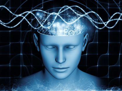 D'après une étude, qui n'a pas été publiée, le cerveau humain réagirait au champ magnétique. © agsandrew, Shutterstock