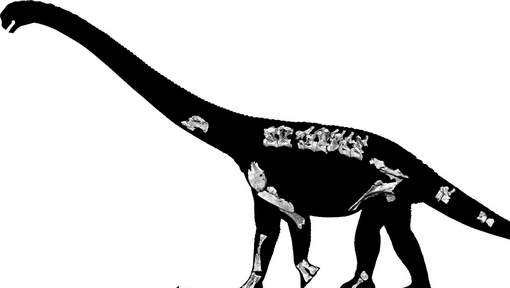 FRANCE-SCIENCE-DINOSAUR