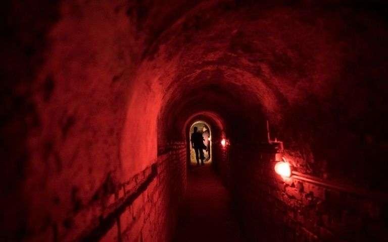 Vienne, capitale du « tourisme macabre »… et pas seulement à Halloween (vidéo) 190