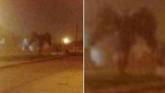 Ange? Démon? De nombreux internautes y sont allés de leur théorie concernant cette silhouette. (Photo: Facebook)