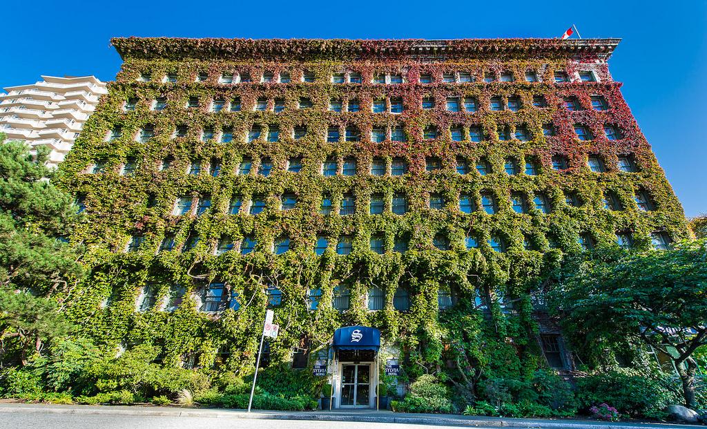 L image du jour le sylvia hotel vancouver au canada for Hotel insolite