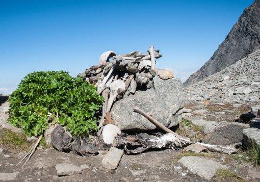 Roopkund, le mystérieux lac aux 500 squelettes (vidéo) By Jack35 135
