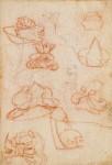 Des revues récemment numérisées permettent aux visiteurs d'accéder aux schémas d'ingénierie détaillés de Leonardo da Vinci (galerie et vidéo) By Jack35 10