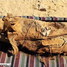 Les archéologues déterrent une tombe égyptienne ancienne avec plus de 30 momies (vidéo) By Jack35 2-11
