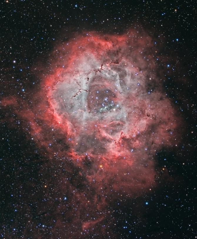 L'image du jour : La nébuleuse de la rose, NGC 2237 (vidéo) By Jack35 3-16