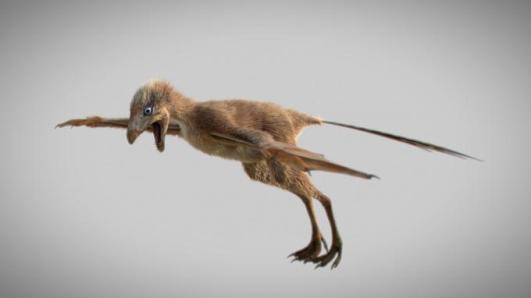 De minuscules dinosaures planaient grâce à leurs ailes de chauve-souris (vidéo) By Jack35 1-23