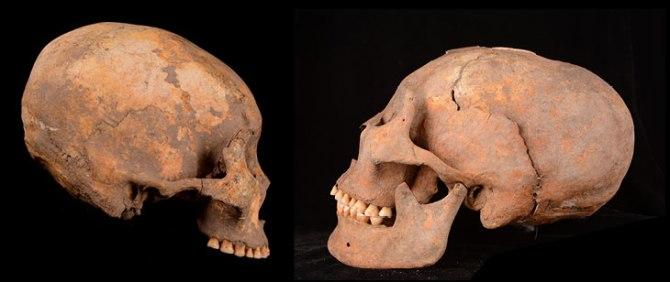 Ces humains se faisaient artificiellement déformer le crâne il y a 5000 ans (vidéo) By Jack35 1-22