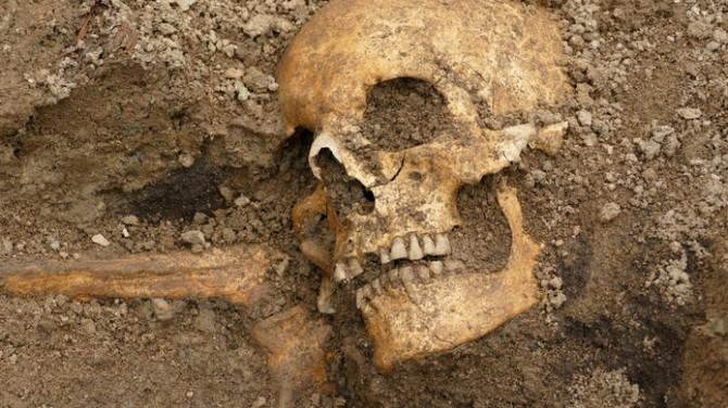 Découverte extrêmement rare sur la période des vikings (diaporama) By Jack35 4-2
