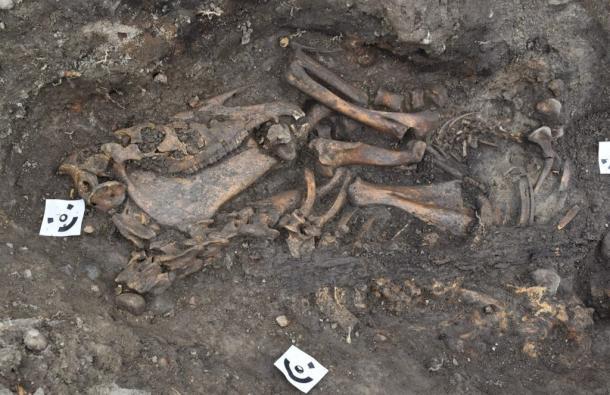 Découverte extrêmement rare sur la période des vikings (diaporama) By Jack35 7-2