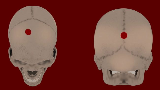 Le «règne de la terreur» de l'empire inca révélé dans quatre anciens crânes découverts dans une poubelle (vidéo) By Jack35 1-67