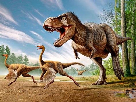 Les dinosaures avaient-ils vraiment des plumes ? (vidéo) By Jack35 2-15