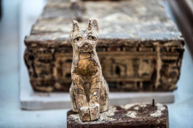 Deux momies de lionceaux découvertes pour la première fois en Egypte (vidéo) By Jack35 1-59