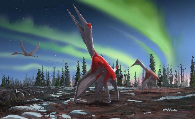 Paléontologie : découverte d'un dragon piégé dans la glace (vidéo) By Jack35 1-26