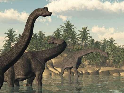 Les humains vivaient-ils en même temps que les dinosaures ? (vidéo) By Jack35 1-53