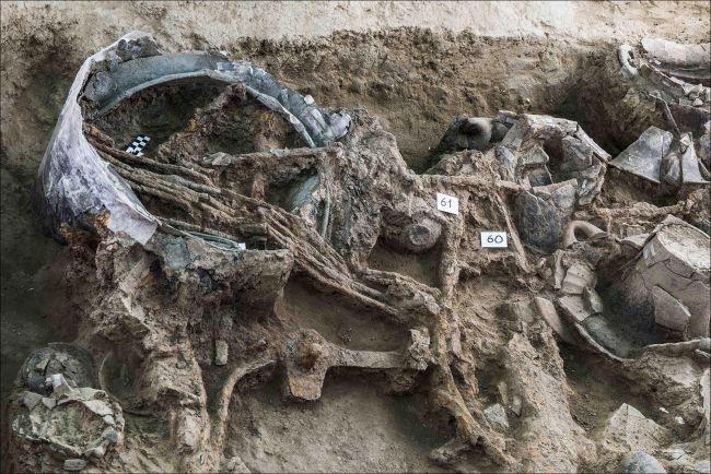 Tombe princière d'un homme mystérieux de l'âge du fer découverte en Italie (vidéo)By Jack35 3-14