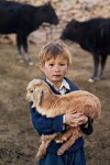 Superbes portraits d'humains et d'animaux (galerie et vidéo) BY Jack35 5-3