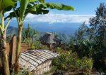 Un foyer néolithique découvert en Nouvelle-Guinée (galerie et vidéo) By Jack35 6-15
