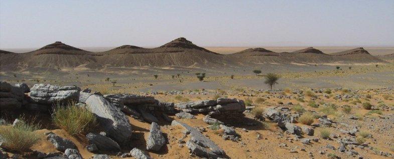 Les paléontologues pensent avoir trouvé «l'endroit le plus dangereux» de l'histoire de la Terre (vidéo) By Jack35 1-78