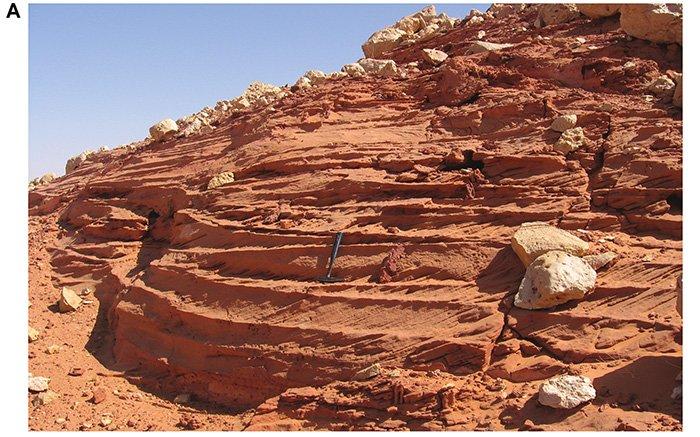 Les paléontologues pensent avoir trouvé «l'endroit le plus dangereux» de l'histoire de la Terre (vidéo) By Jack35 4-19