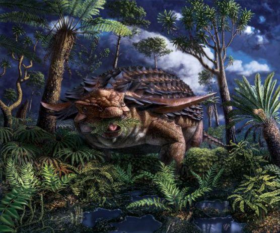 L'estomac d'un dinosaure le mieux conservé jamais découvert révèle le dernier repas du «  dragon endormi  » (galerie et vidéo) By Jack35 1-13