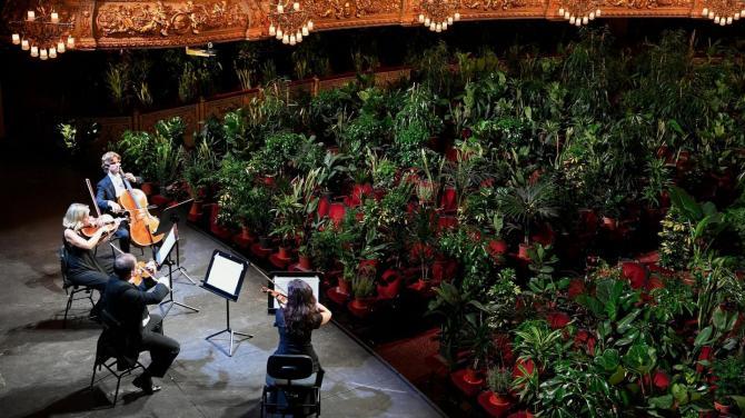 A Barcelone, un concert à la chlorophylle (vidéo) By Jack35 1-66