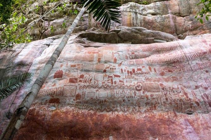 Une «  toile  » tentaculaire de 13 kilomètres de long de bêtes de la période glaciaire découverte cachée dans la forêt amazonienne (vidéo) By Jack35 1-3
