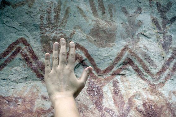 Une «  toile  » tentaculaire de 13 kilomètres de long de bêtes de la période glaciaire découverte cachée dans la forêt amazonienne (vidéo) By Jack35 3-1