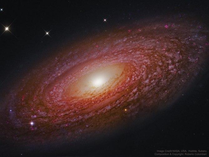 L'image du jour : La galaxie en spirale, NGC 2841 (vidéo) By Jack35 1-54