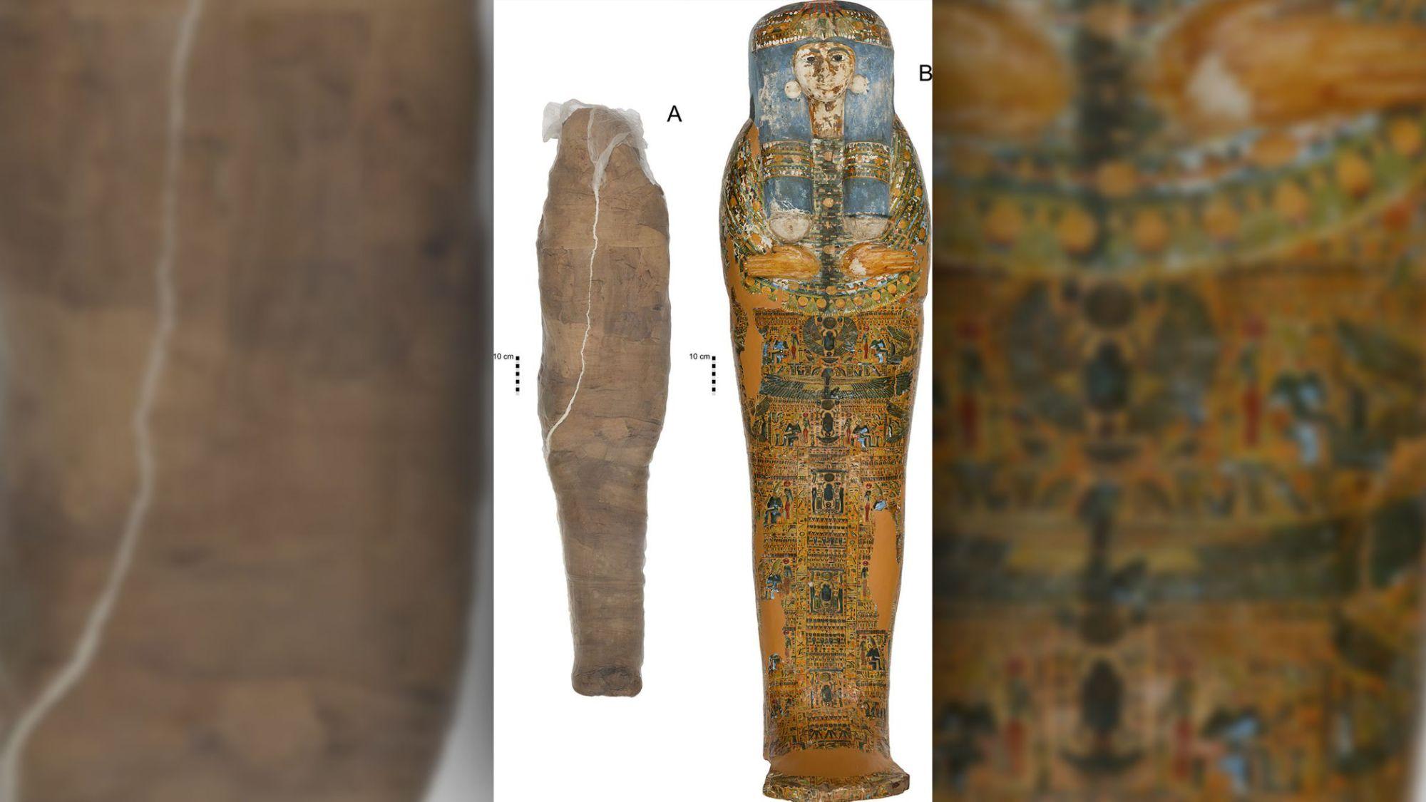Une ancienne momie retrouvée ensevelie dans un étrange cocon jamais vu par les archéologues (diaporama et vidéo) By Jack35 2-7