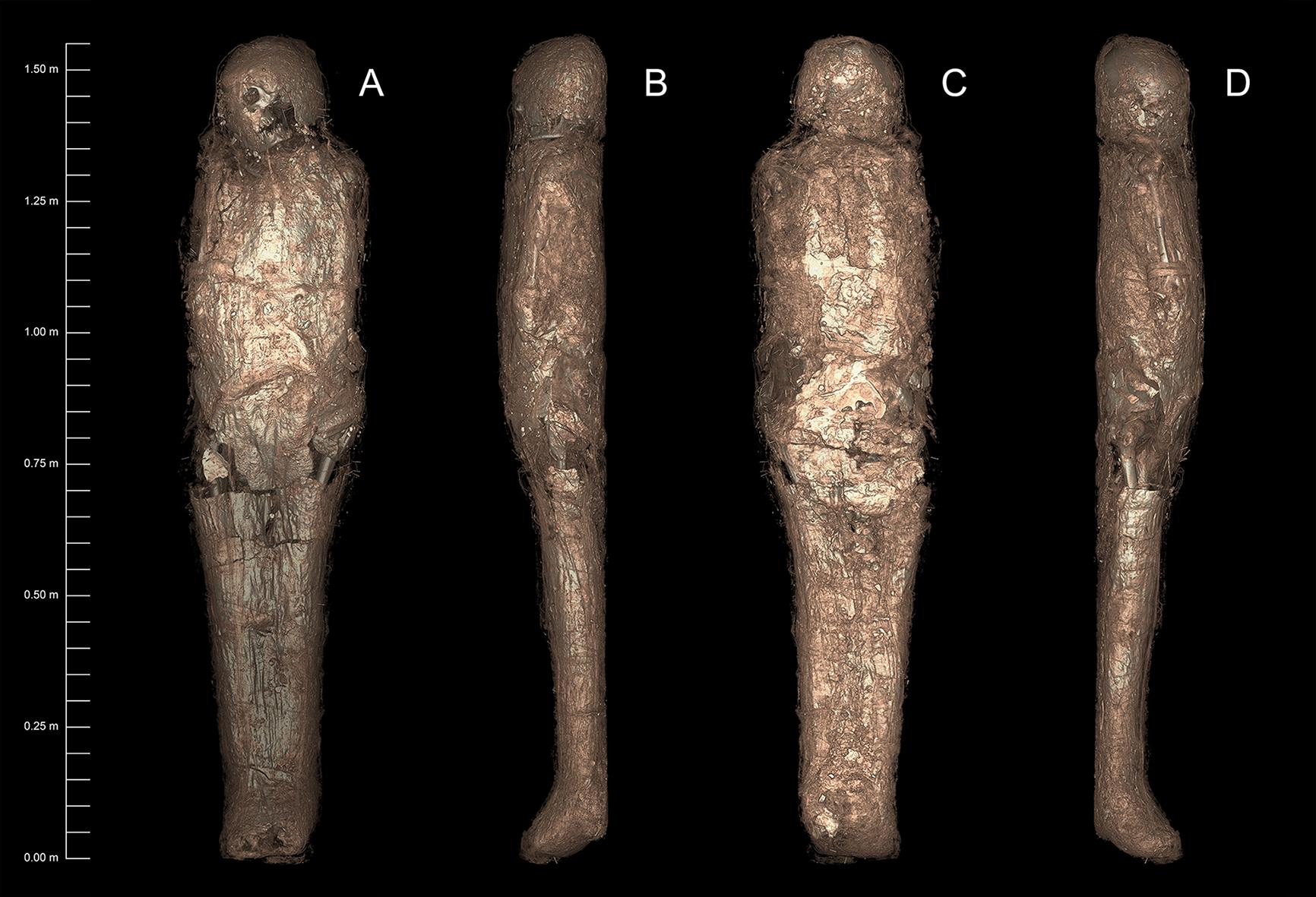 Une ancienne momie retrouvée ensevelie dans un étrange cocon jamais vu par les archéologues (diaporama et vidéo) By Jack35 3