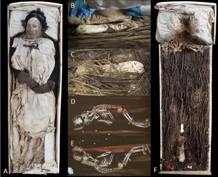 Un évêque du 17ème siècle a été mystérieusement enterré avec un fœtus (vidéo) By Jack35 1-39