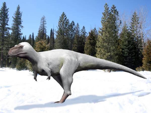 Nanuqsaurus – Le Tyran du Nord (vidéo) By Jack35 2-20