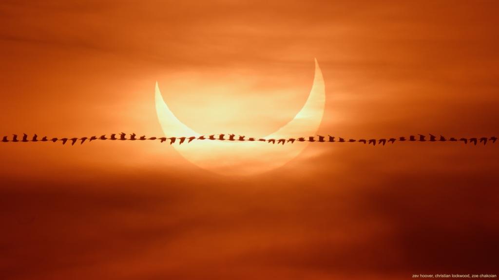 L'image du jour : Eclipse du 10 juin 2021 (vidéo) By Jack35 1-34