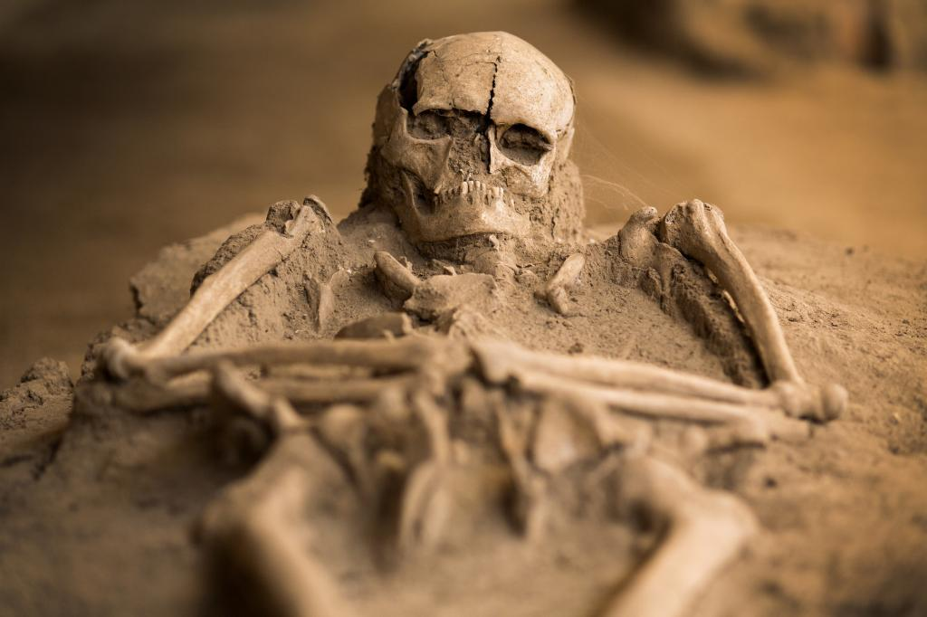 Découvert il y a 30 ans, ce squelette de « vampire » révèle ses secrets (vidéo) By Jack35 1-77