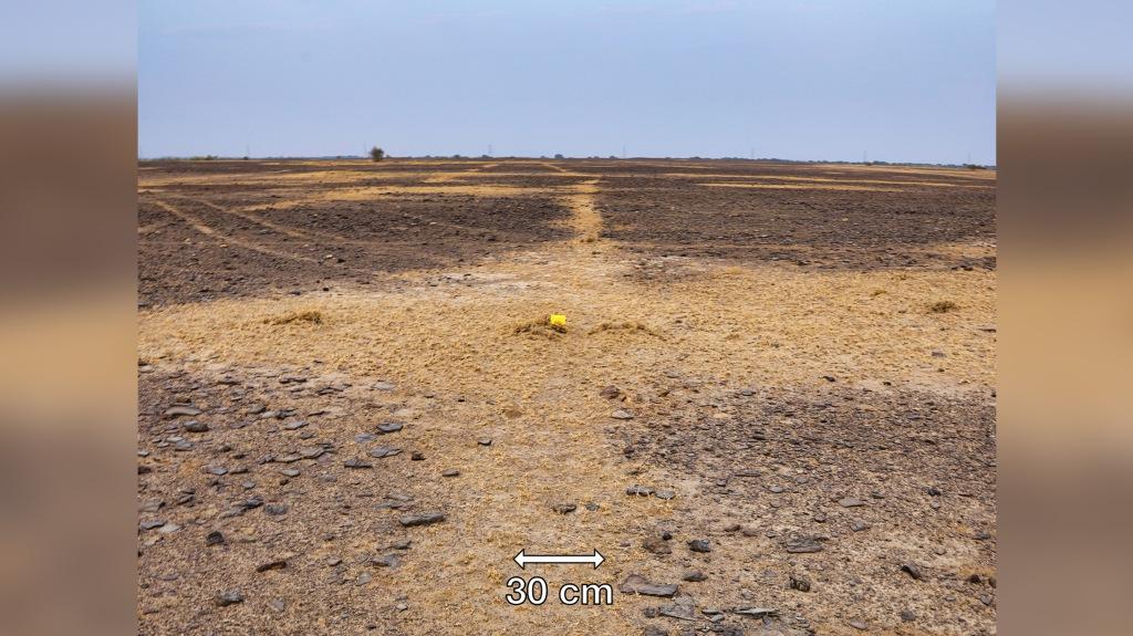 Google Earth révèle le plus grand géoglyphe du monde (diaporama + Vidéo sur Bidfoly.com) By Jack35 2-18