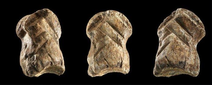 Un os gravé par Néandertal illustre son activité symbolique (vidéo) By Jack35 1-20
