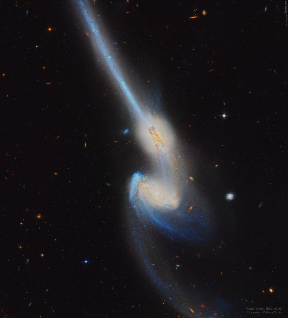 L'image du jour : Quand les souris entrent en collision, NGC 4676 ! (vidéo) By Jack35 1-22